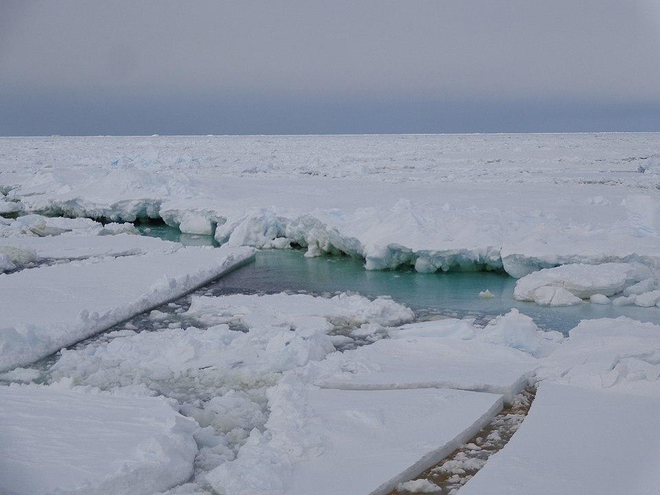Fingerprints of the Gods Exhibit 7, The Ross Sea Cores